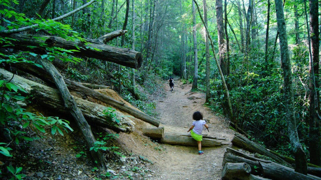Kids hiking along a forested trail