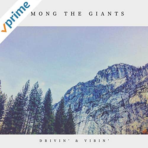 Album cover for Among the Giants