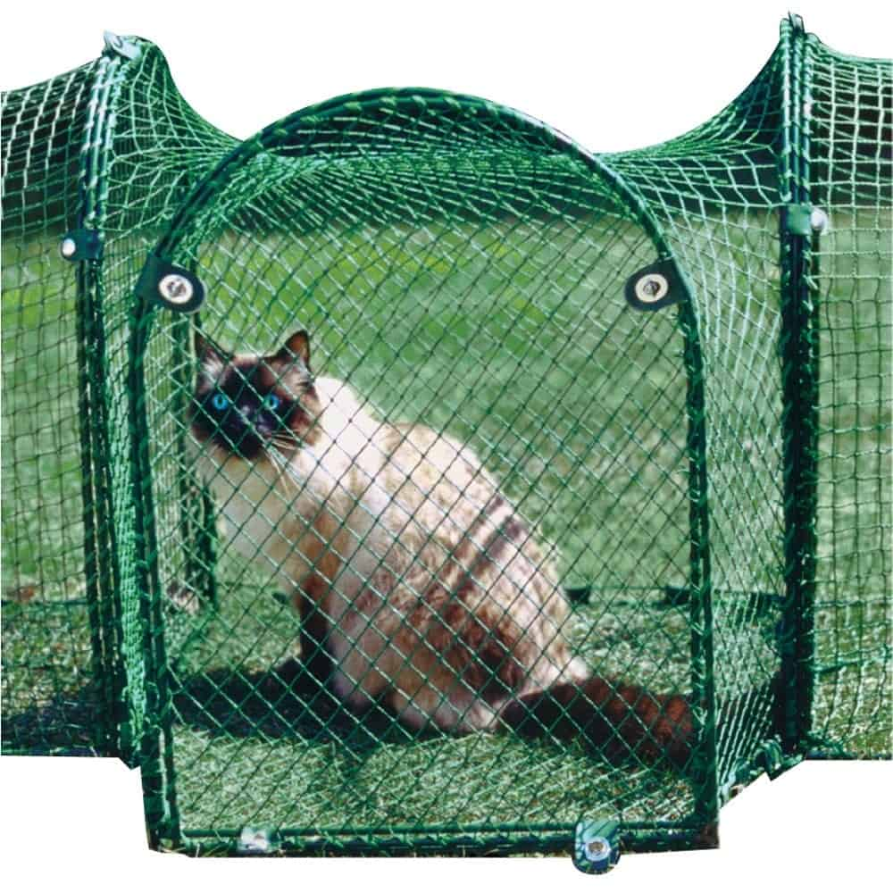 A cat lounges in the grass from the protection of an outdoor, mesh cat habitat.