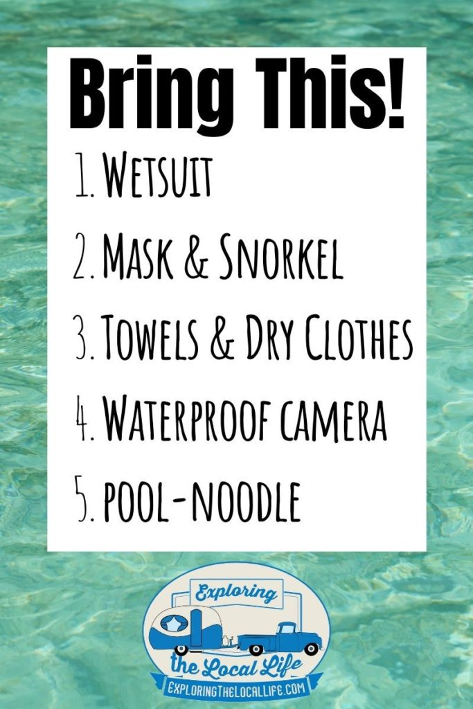 Image with text listing out things to bring when swimming with manatees.